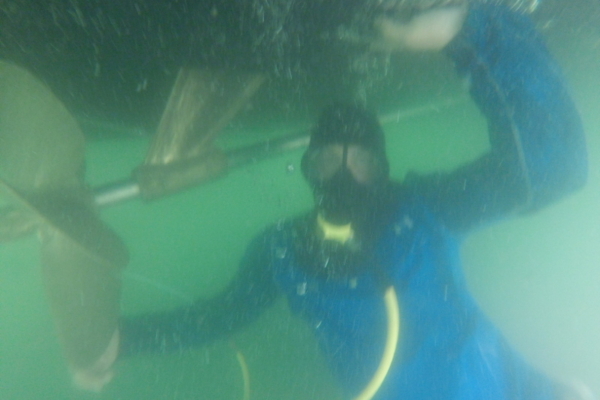professional dive services in tampa bay