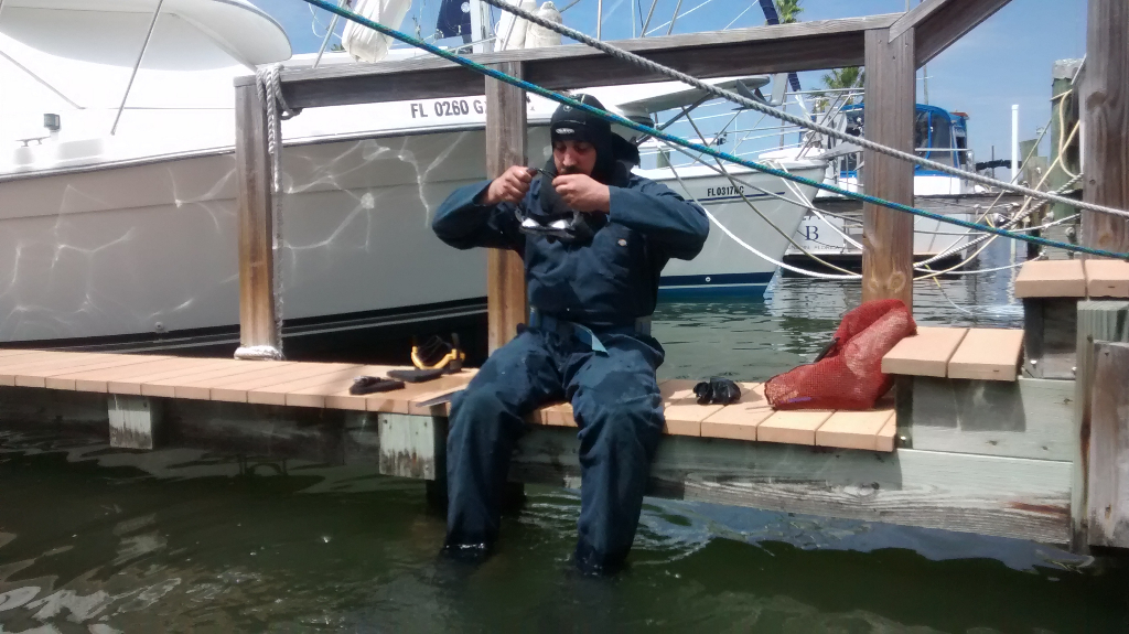 professional dive service in pinellas county florida