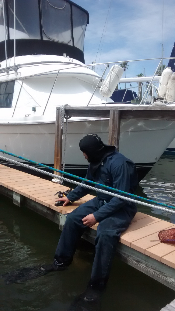 boat bottom cleaning florida