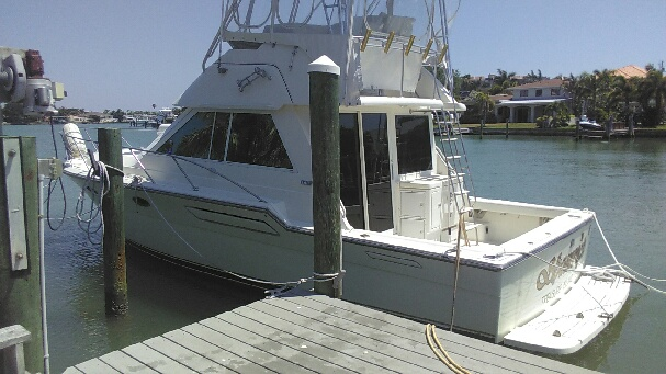 boat bottom cleaning pinellas county