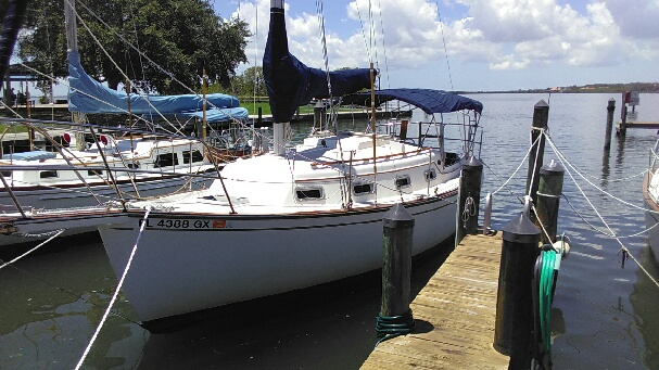 clean boat-hull in safety harbor florida