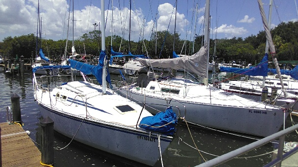 clean your boat bottom safety harbor fl