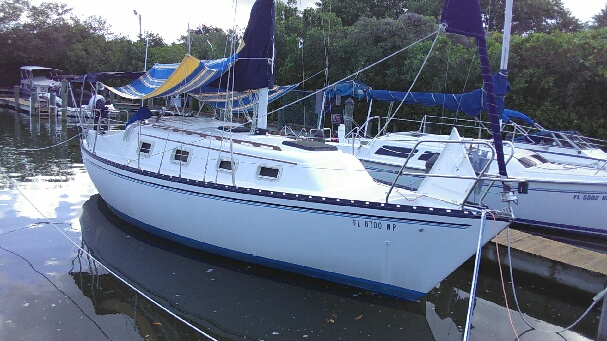 safety harbor fl boat bottom cleaning